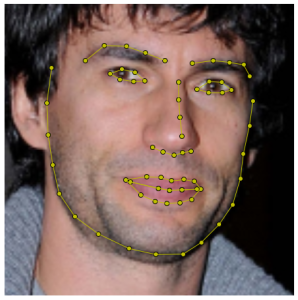 Figure 1. A facial image annotated wih 68 sparse landmarks.